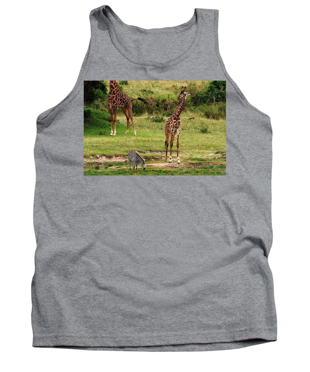 Zebra Tank Top featuring the photograph Masai Mara Wildlife Scene by Aidan Moran