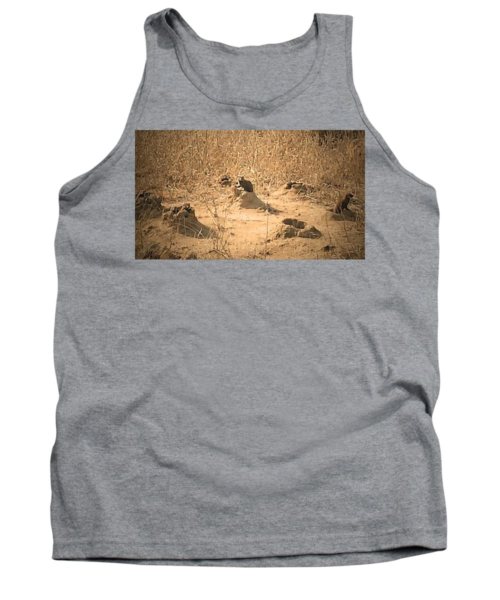 Mongoose Tank Top featuring the photograph Mongoose by Lisa Byrne