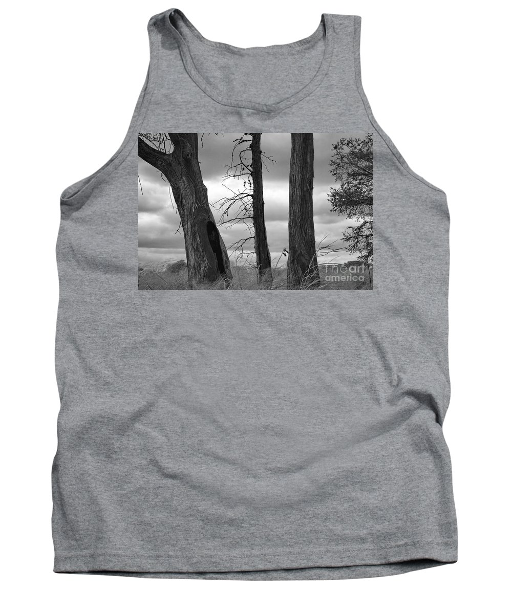 Black & White Tank Top featuring the photograph Monochrome Trees by Gary Richards
