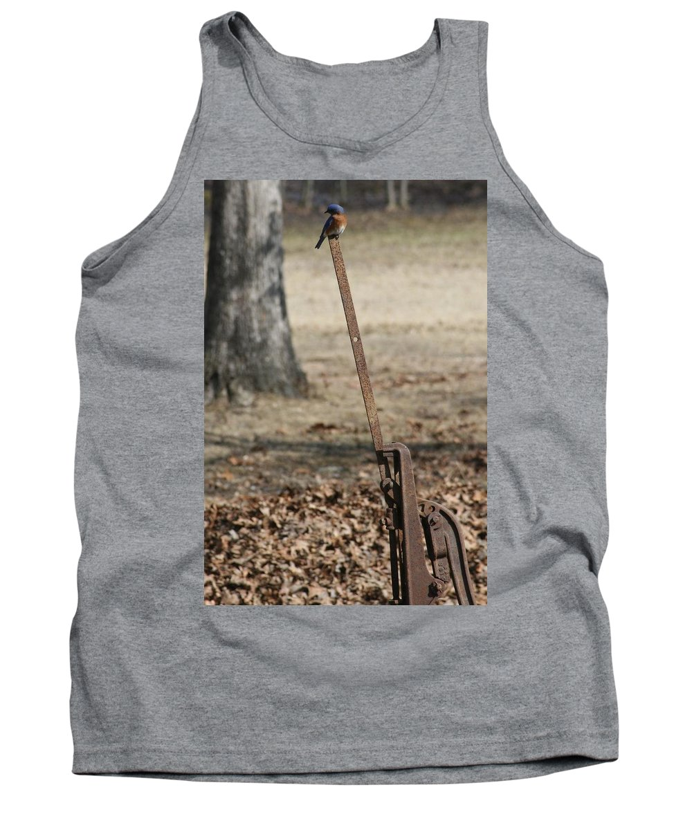 Mountain Bluebird Tank Top featuring the photograph Mountain Bluebird On Well Pump V by Cody Cookston