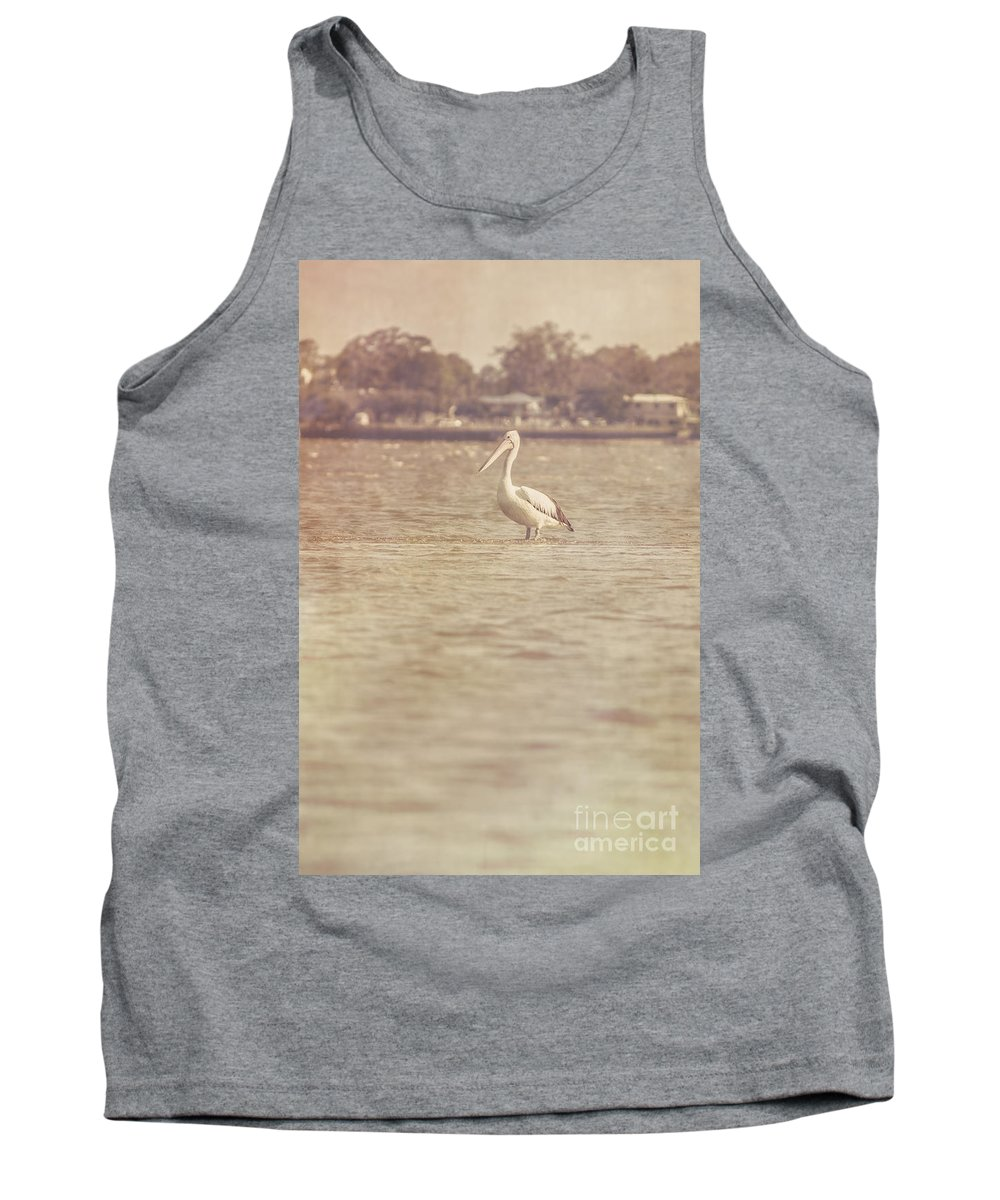 Vintage Tank Top featuring the photograph Old Pelican Photograph by Jorgo Photography - Wall Art Gallery