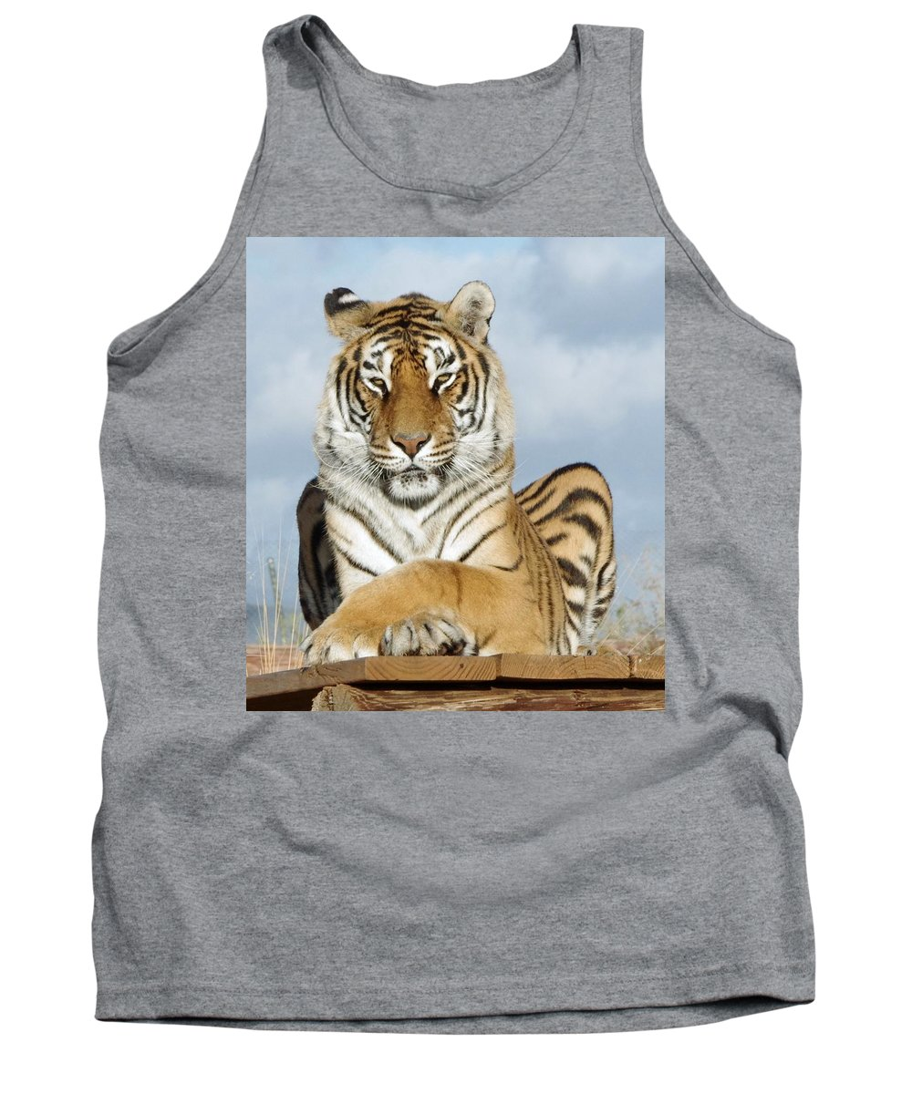 Out Of Africa Tank Top featuring the photograph Out Of Africa Tiger 3 by Phyllis Spoor
