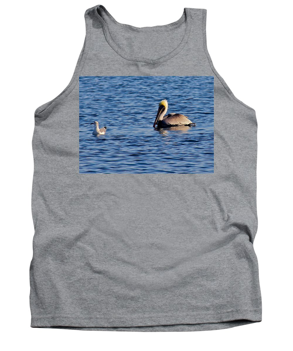 Bird Tank Top featuring the photograph Pelican And Gull by Denise Mazzocco