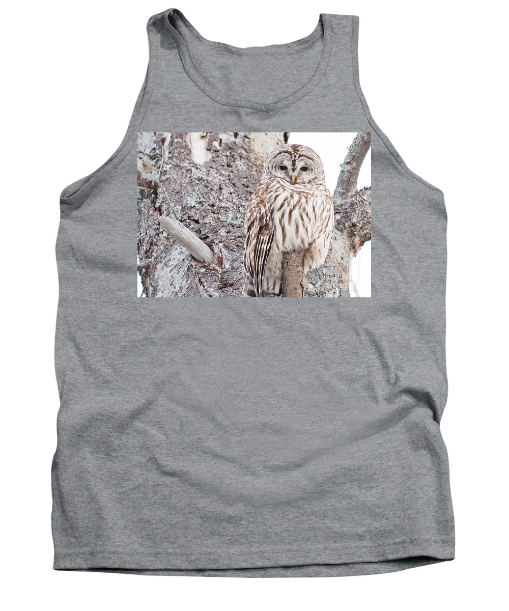 Owls Tank Top featuring the photograph Proud by Cheryl Baxter