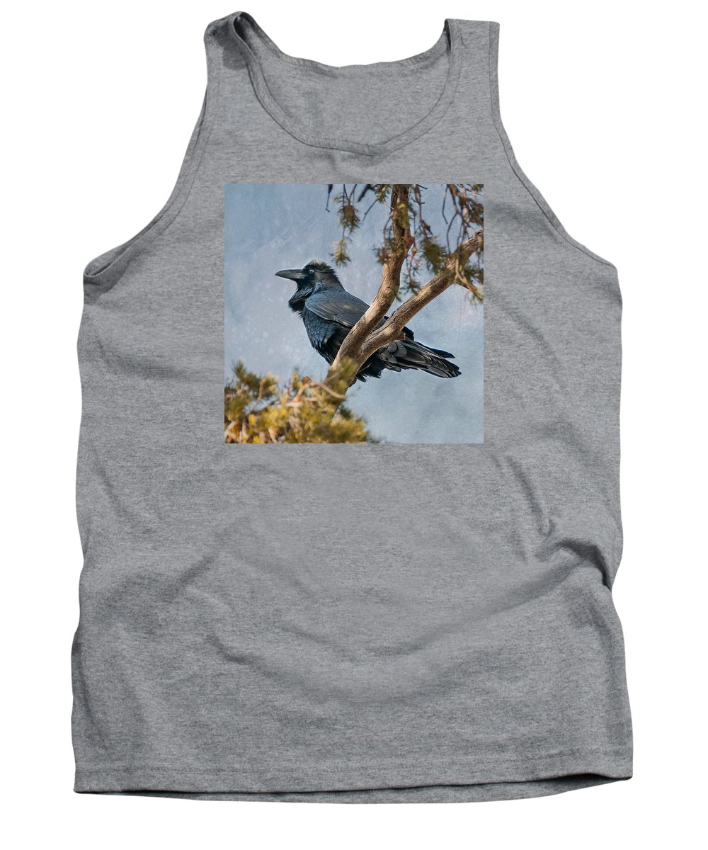 Arizona Tank Top featuring the photograph Raven by Alan Toepfer