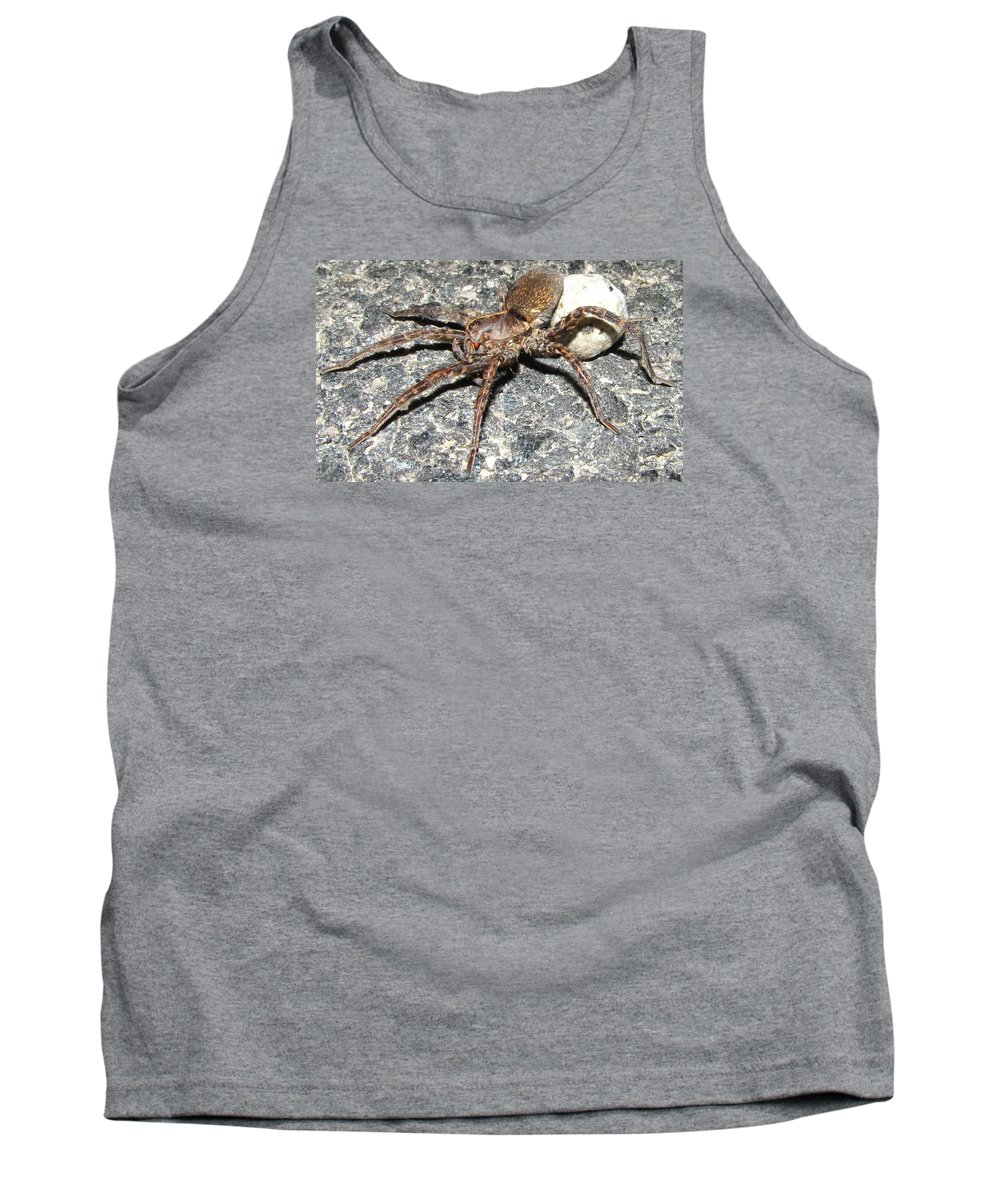 Red Eyed Hunting Spider Images Maryland Hunting Spider Prints Arachnid Mother Spider Images Spider Egg Sac Images Forest Hunter Entomology Big Spider Prints Giant Wolf Spider Prints Big Fishing Spider Posters Tank Top featuring the photograph Red Eye by Joshua Bales