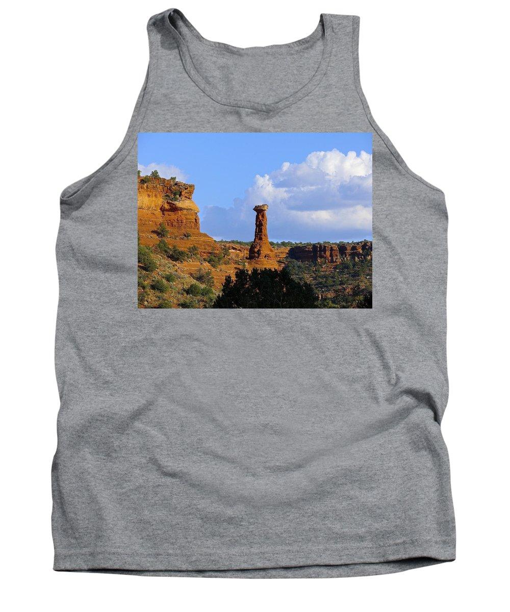 Sedona Tank Top featuring the photograph Red Rock Secret Mountain by Barbara Zahno