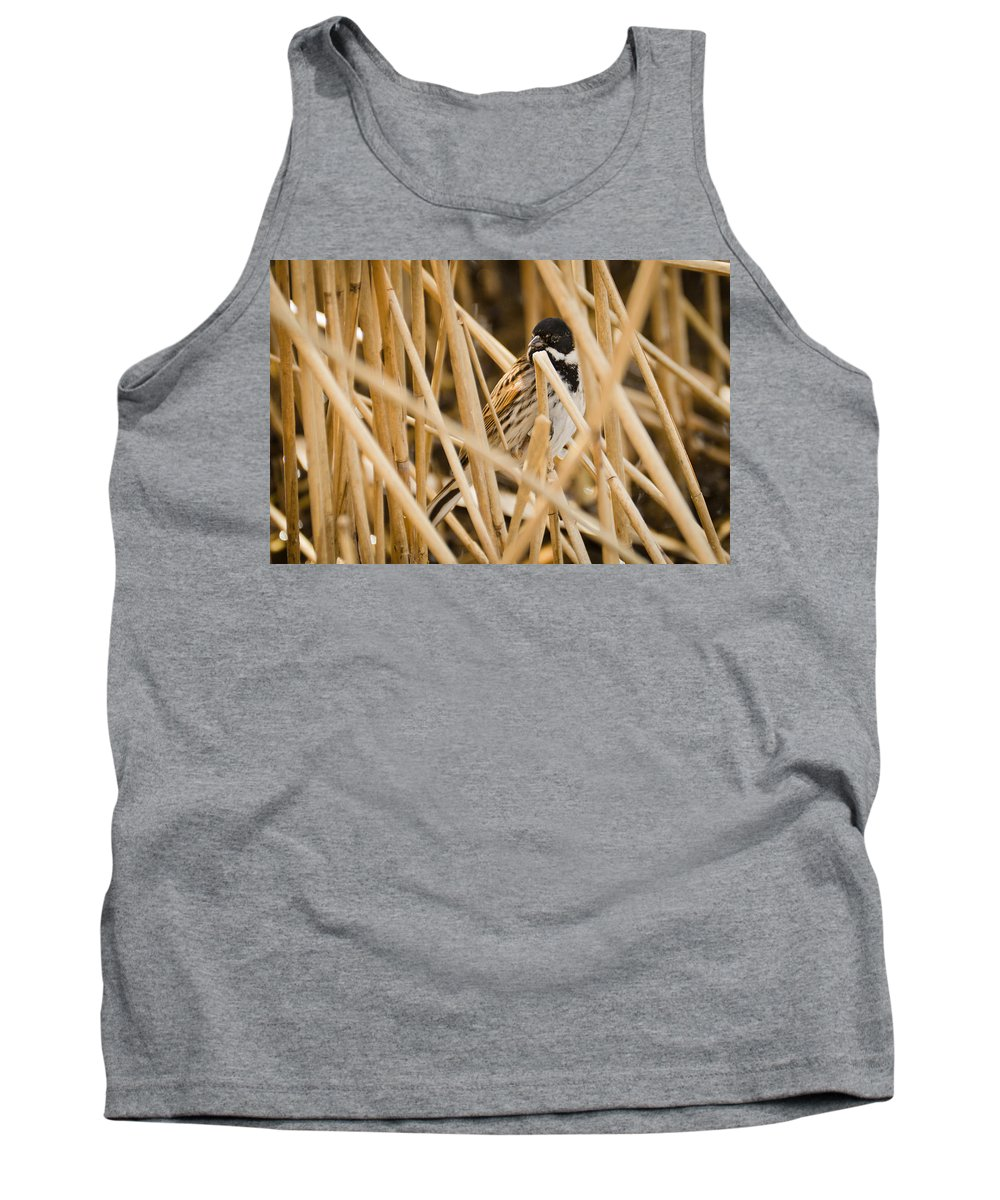 Animal Tank Top featuring the photograph Reed Bunting by David Head