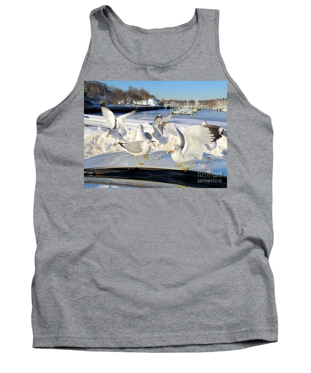 Nature Tank Top featuring the photograph Dining In The Hood by Ed Weidman