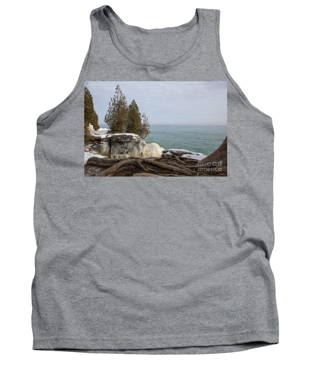 Tree Tank Top featuring the photograph Rooted In Winter by Nikki Vig