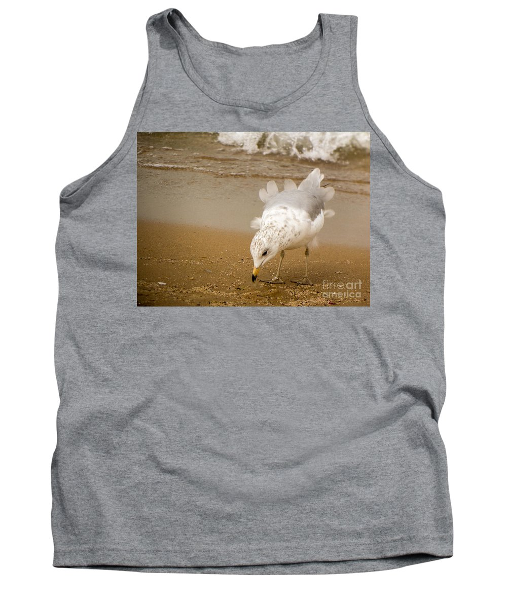 Seagull Beach Tank Top featuring the photograph Ruffled Feathers by Lisa Richards