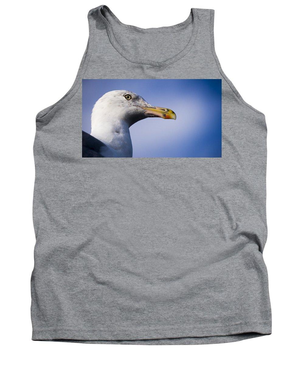 Bird Tank Top featuring the photograph Seagull - Cape Neddick - Maine by Steven Ralser
