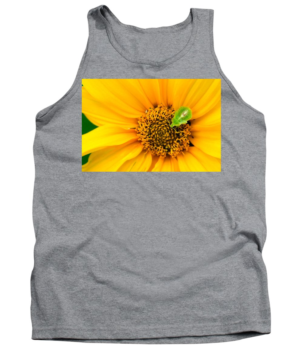 3scape Photos Tank Top featuring the photograph Small World by Adam Romanowicz