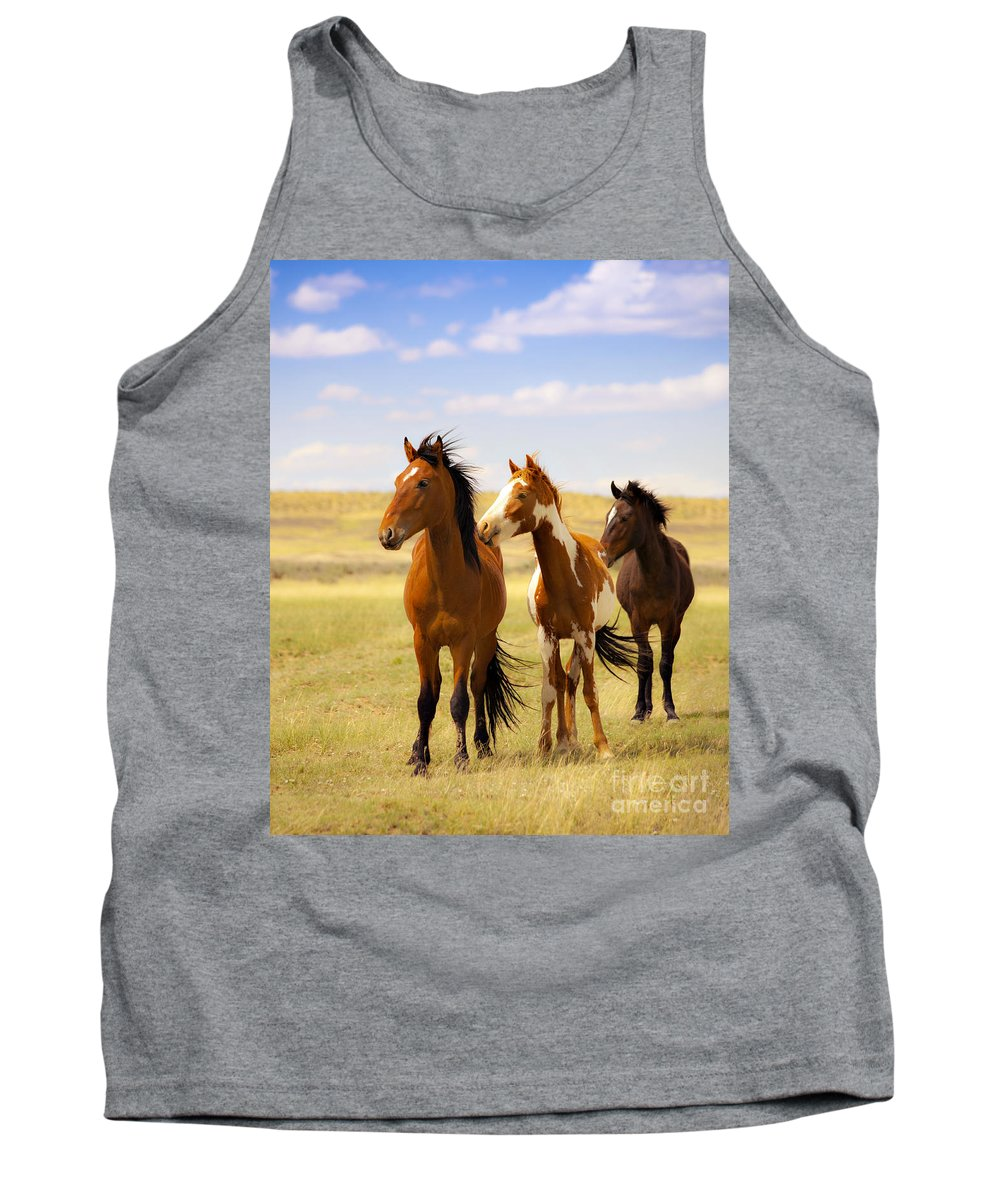 Wild Horses Navajo Indian Reservation Tank Top featuring the photograph Southwest Wild Horses On Navajo Indian Reservation by Jerry Cowart