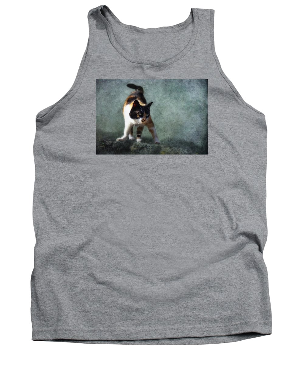 Cat Tank Top featuring the photograph Street Fighter by Claudia Moeckel