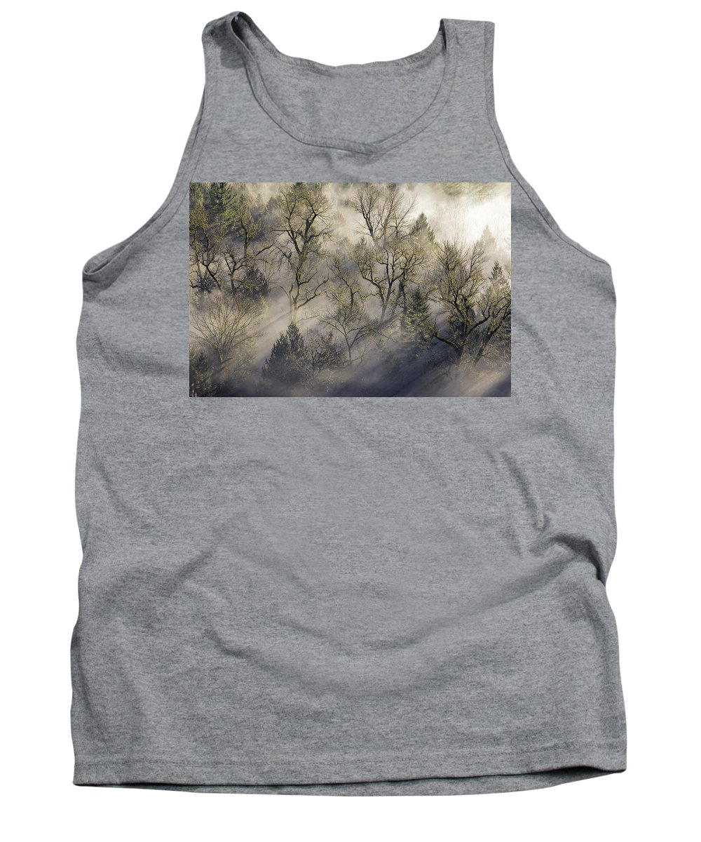 Jonsrud Tank Top featuring the photograph Sun Rays Through The Morning Mist by David Gn