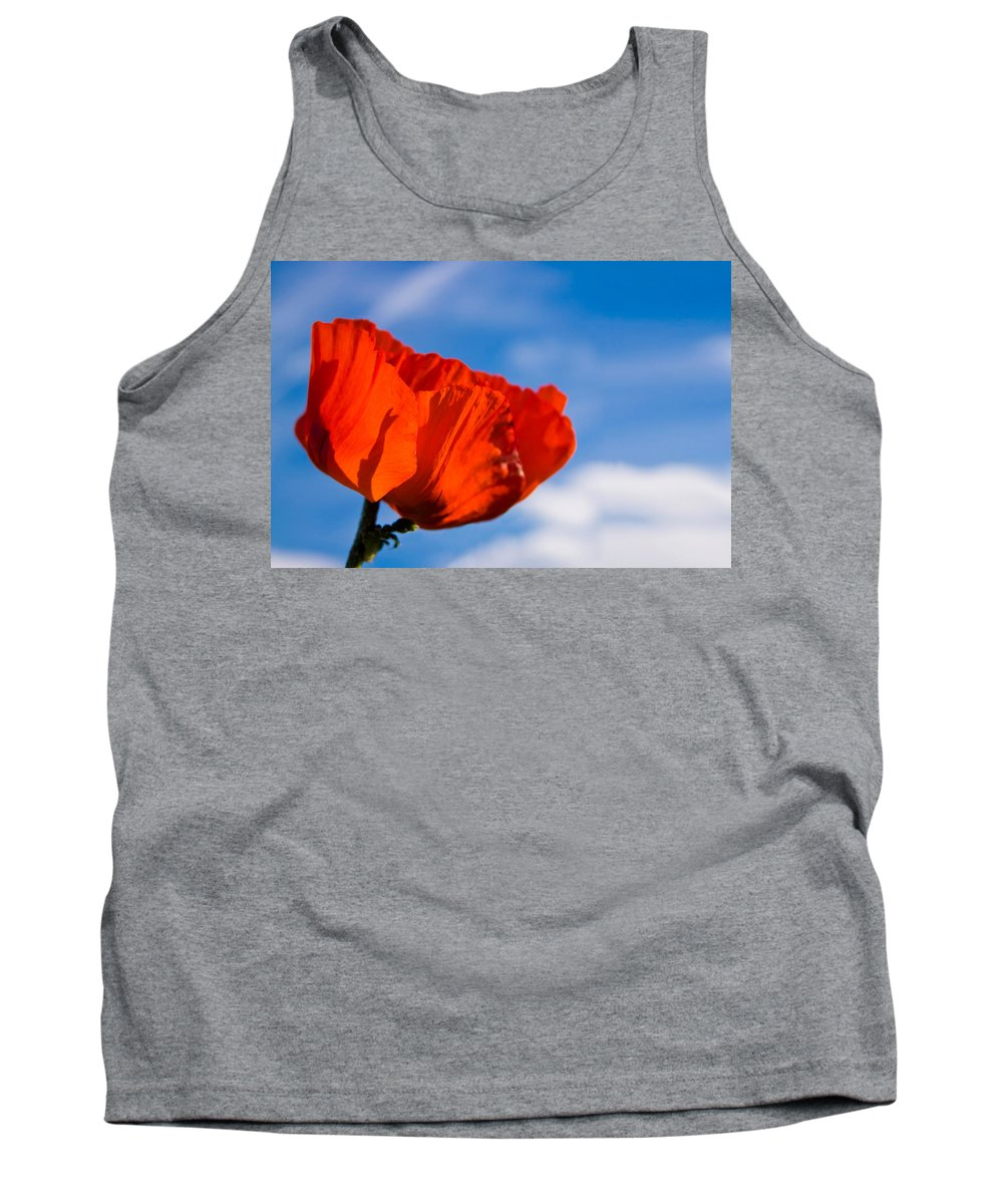 3scape Photos Tank Top featuring the photograph Sunlit Poppy by Adam Romanowicz