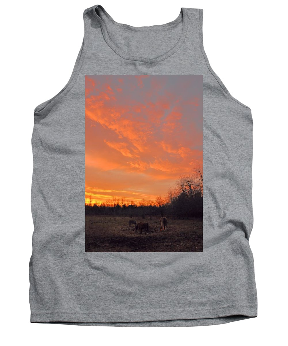 Sunrise Tank Top featuring the photograph Sunrise With Horses by Valerie Kirkwood