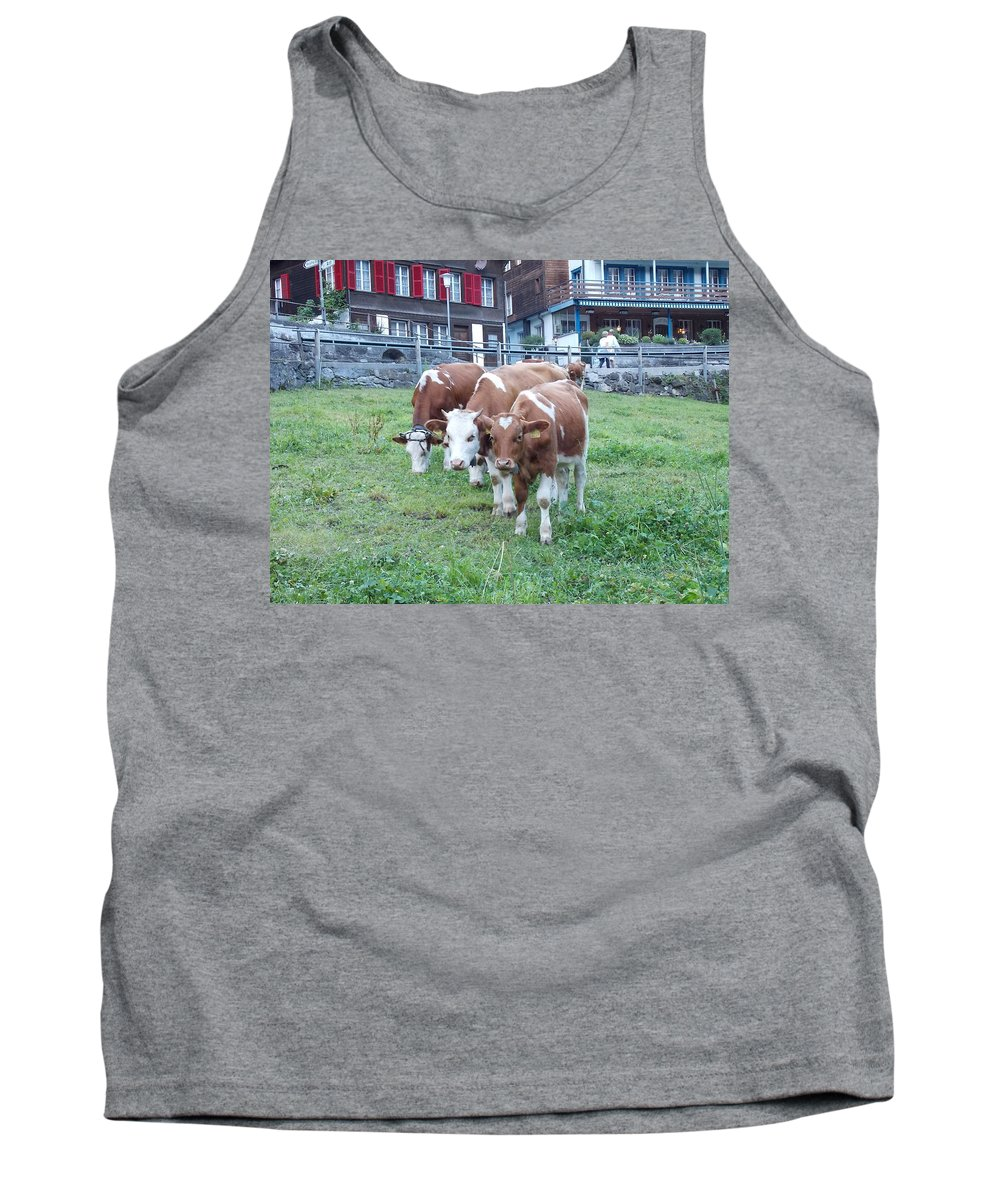 Switzerland Tank Top featuring the photograph Swiss Cows by Nina Kindred