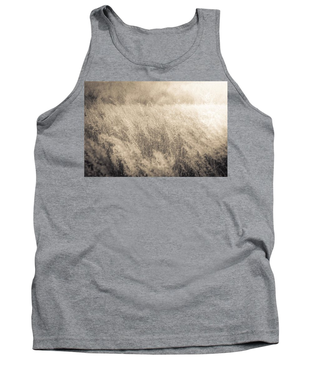 Romance Tank Top featuring the photograph The Color Of Romance by Shane Holsclaw