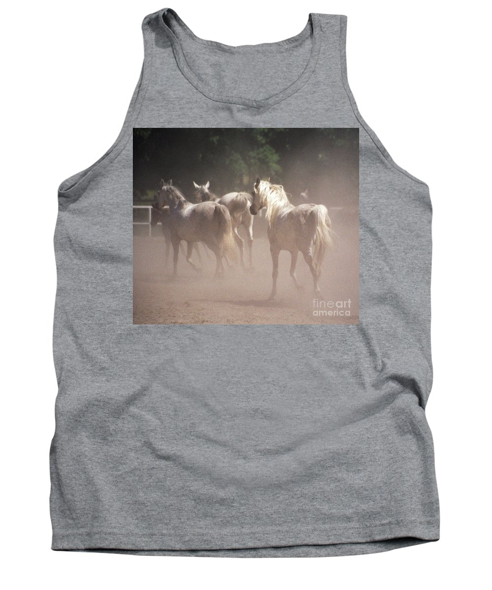 Arabian Horse Tank Top featuring the photograph The Daughters Of The Desert by Angel Ciesniarska