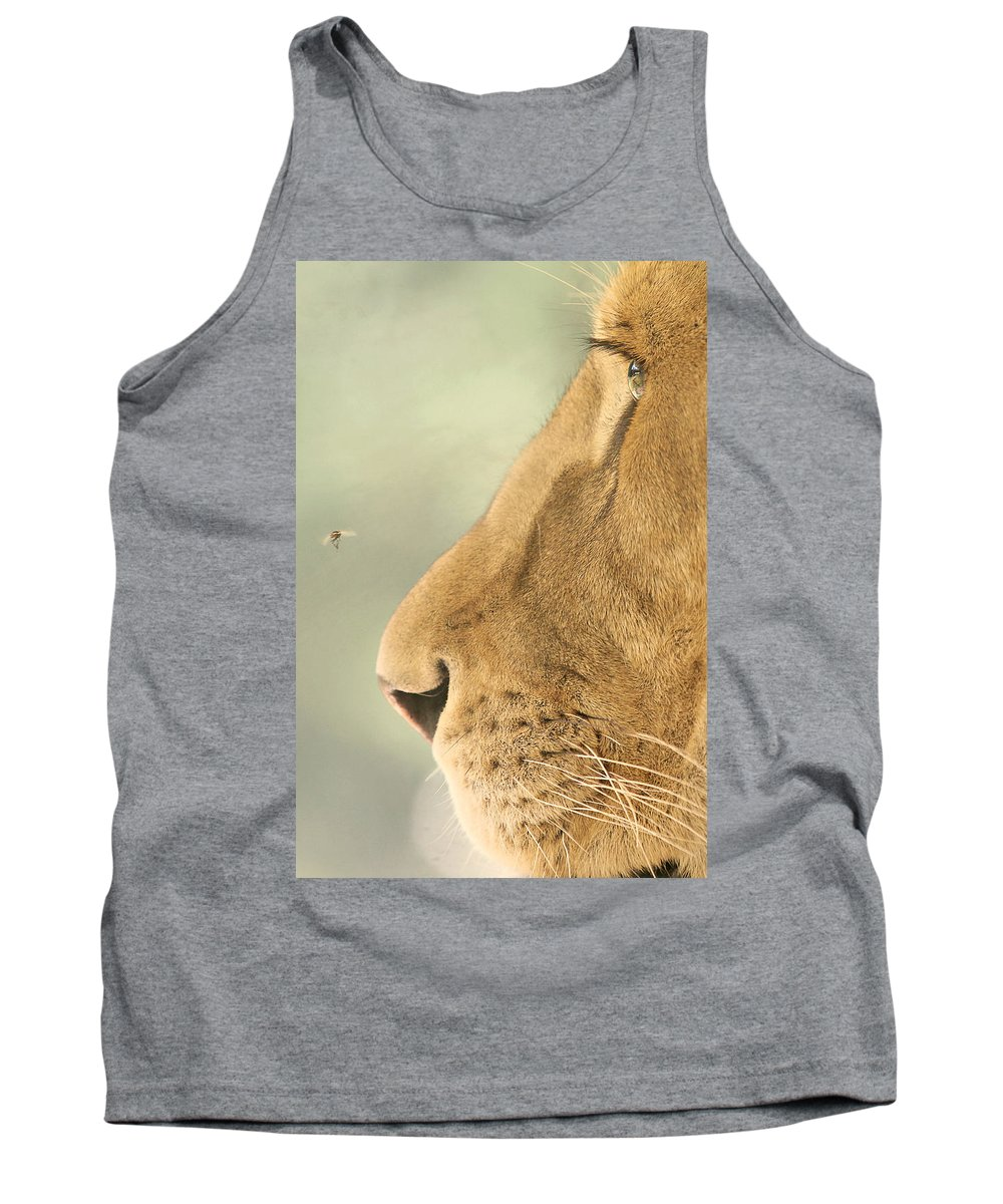 Nature Tank Top featuring the photograph The Lion And The Fly by Carrie Ann Grippo-Pike