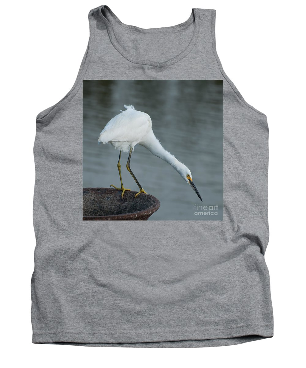 Snowy Tank Top featuring the photograph There's A Gator Down There by Photos By Cassandra