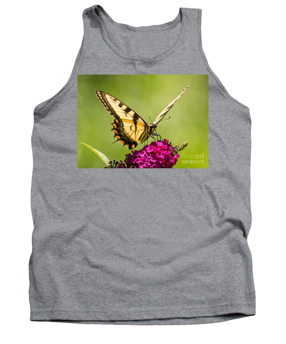 Iris Holzer Richardson Tank Top featuring the photograph Tiger Swallowtail by Iris Richardson