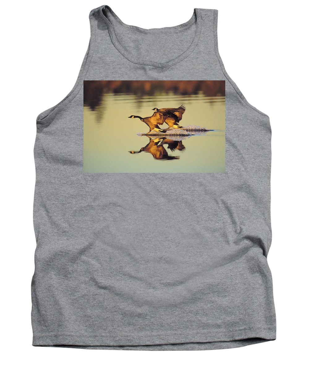 Tank Top featuring the photograph Tk0157, Thomas Kitchin Canada Geese by First Light