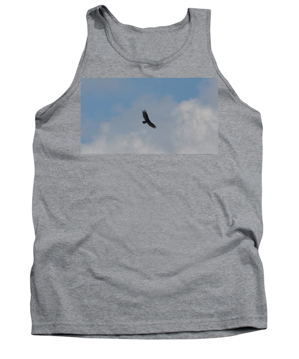 Turkey Vulture In Flight Tank Top featuring the photograph Turkey Vulture In Flight by Maria Urso