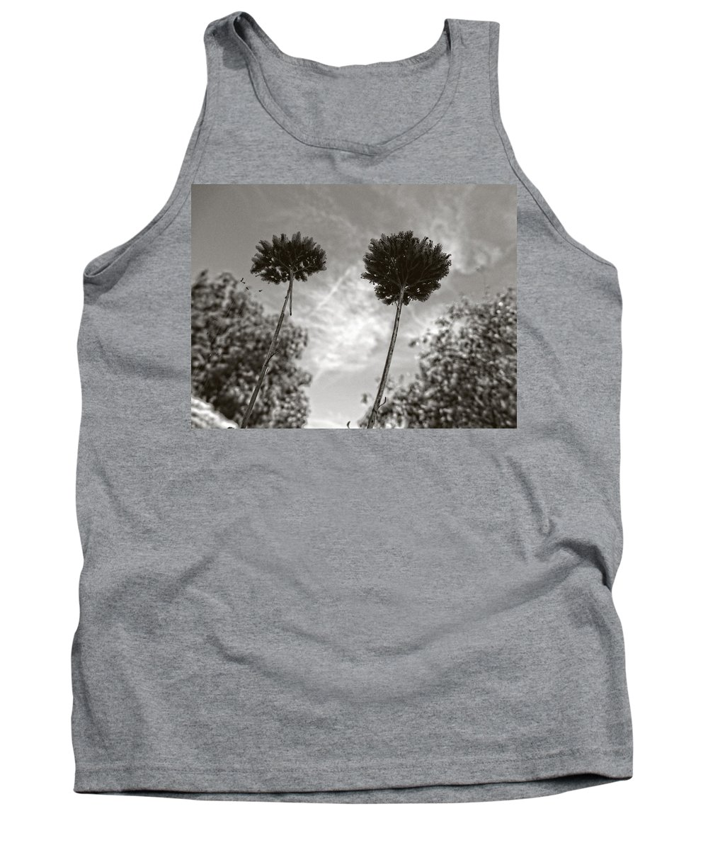 Nature Tank Top featuring the photograph Twins by Mark David Gerson