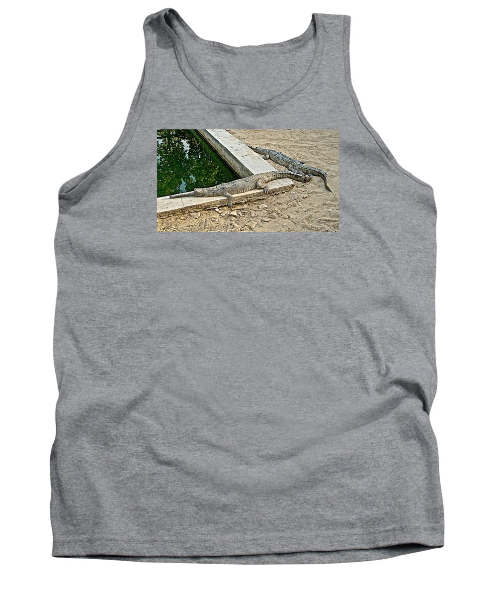 Two Gharial Crocodiles In Gharial Conservation Breeding Center In Chitwan National Park In Nepal Tank Top featuring the photograph Two Gharial Crocodiles In Gharial Conservation Breeding Center In Chitwan Np-nepal  by Ruth Hager
