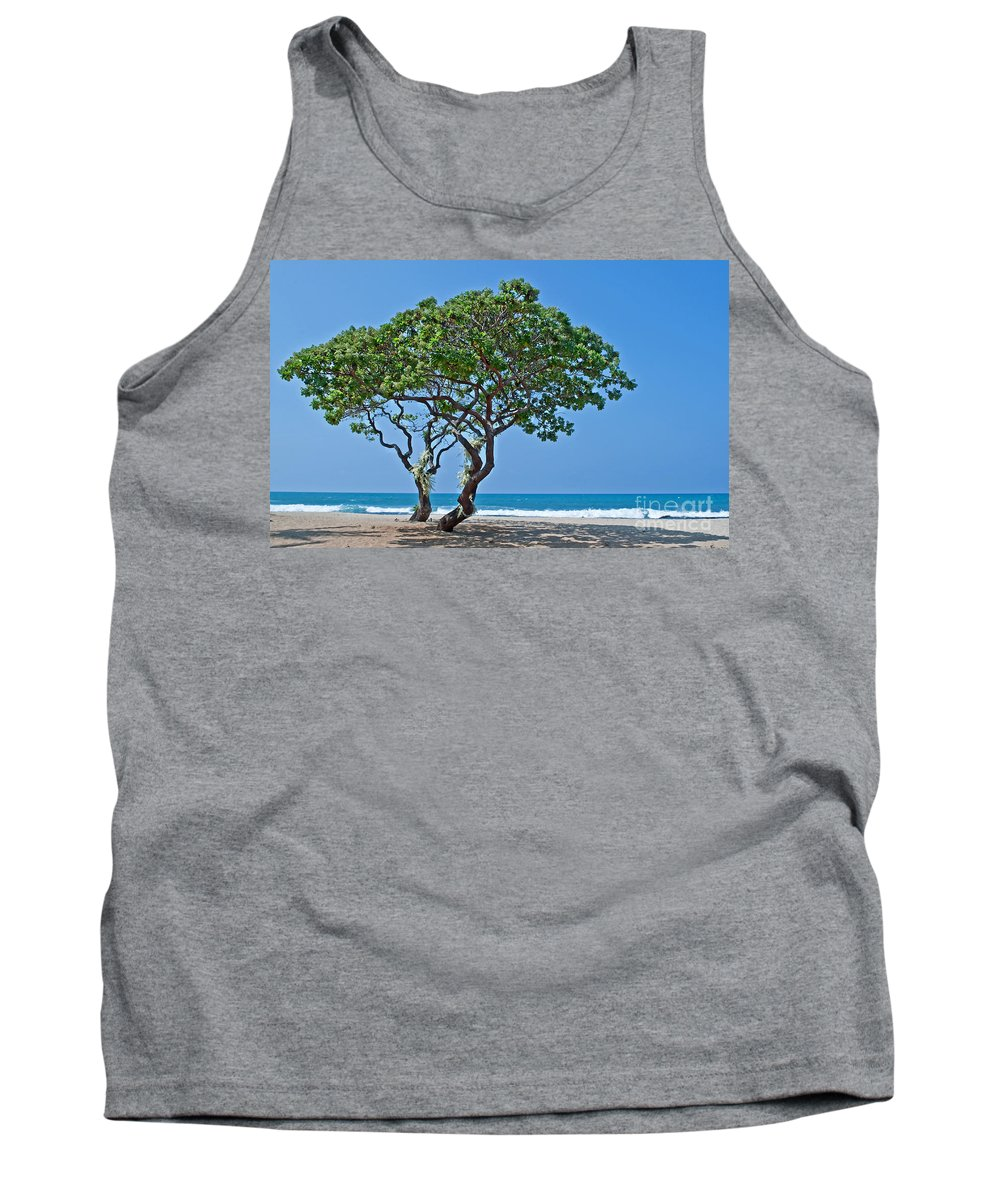 Trees Tank Top featuring the photograph Two Heliotrope Trees On Tropical Beach Art Prints by Valerie Garner