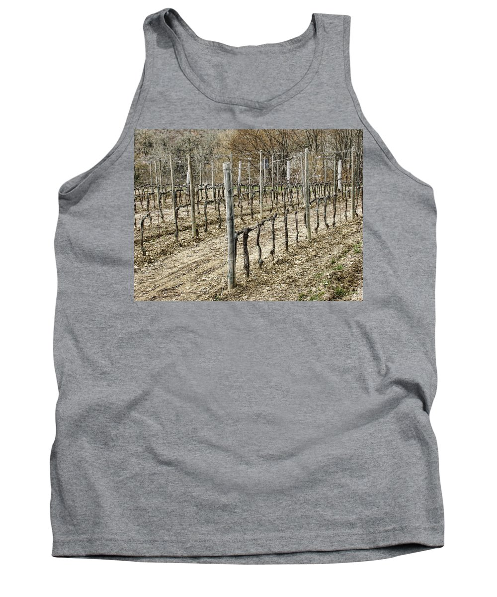 Vineyard Tank Top featuring the photograph Vineyard In Early Spring by Phyllis Taylor