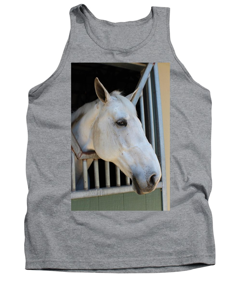 Horse Tank Top featuring the photograph Waiting For A Ride by Robert Phelan