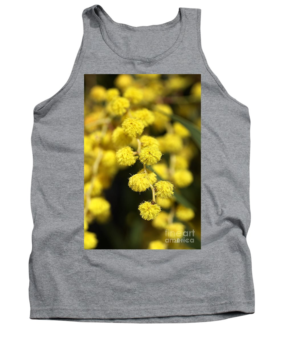 Bubbleblue Tank Top featuring the photograph Wattle Flowers Australian Native by Joy Watson