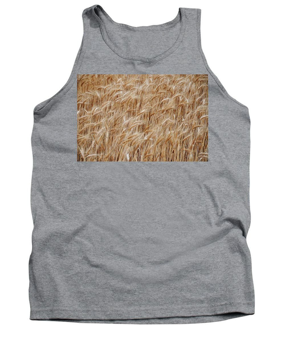Wheat Tank Top featuring the photograph Wheat Harvest by Phill Petrovic