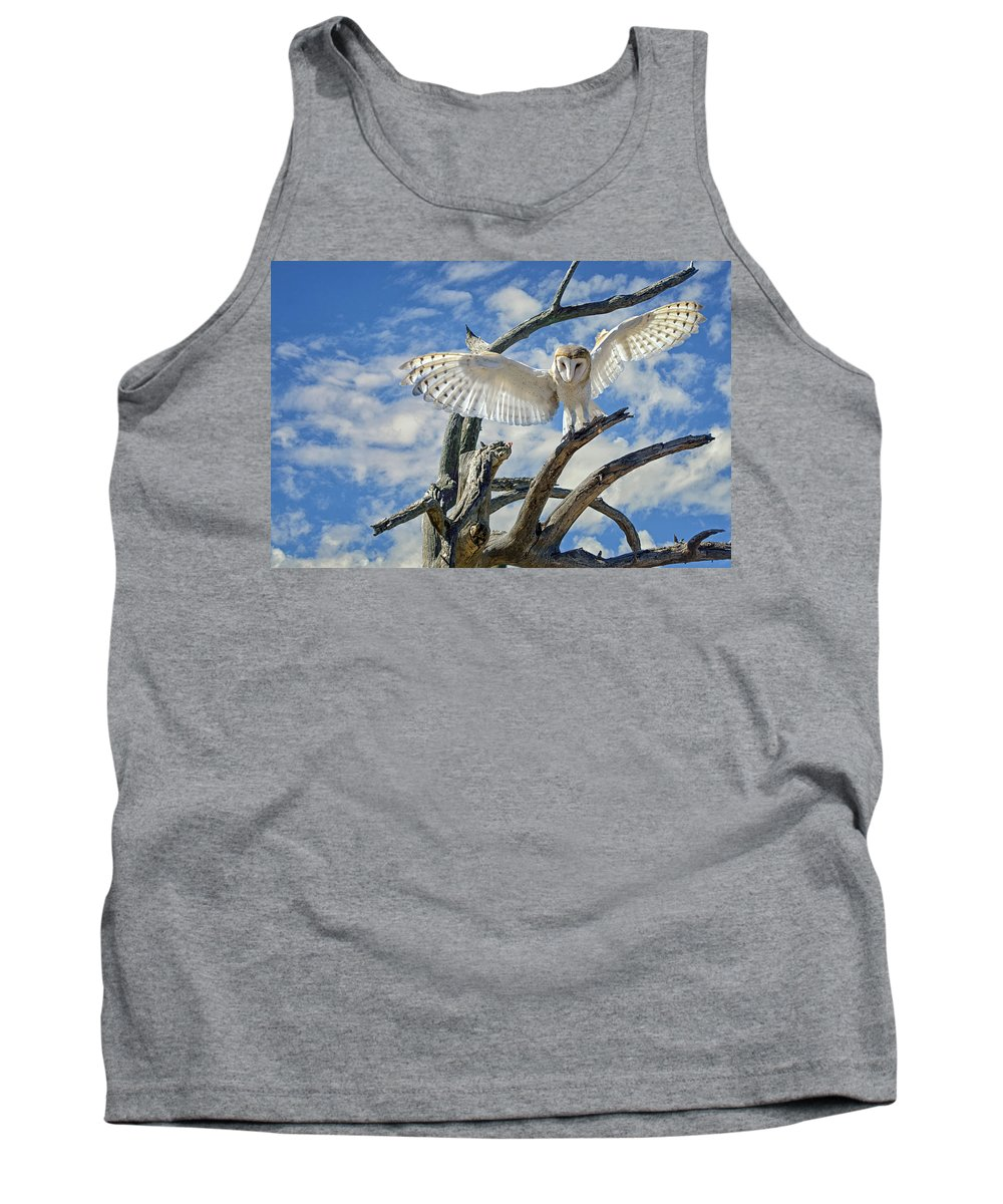 Barn Owl Tank Top featuring the photograph White Wide Wings by Evelyn Harrison