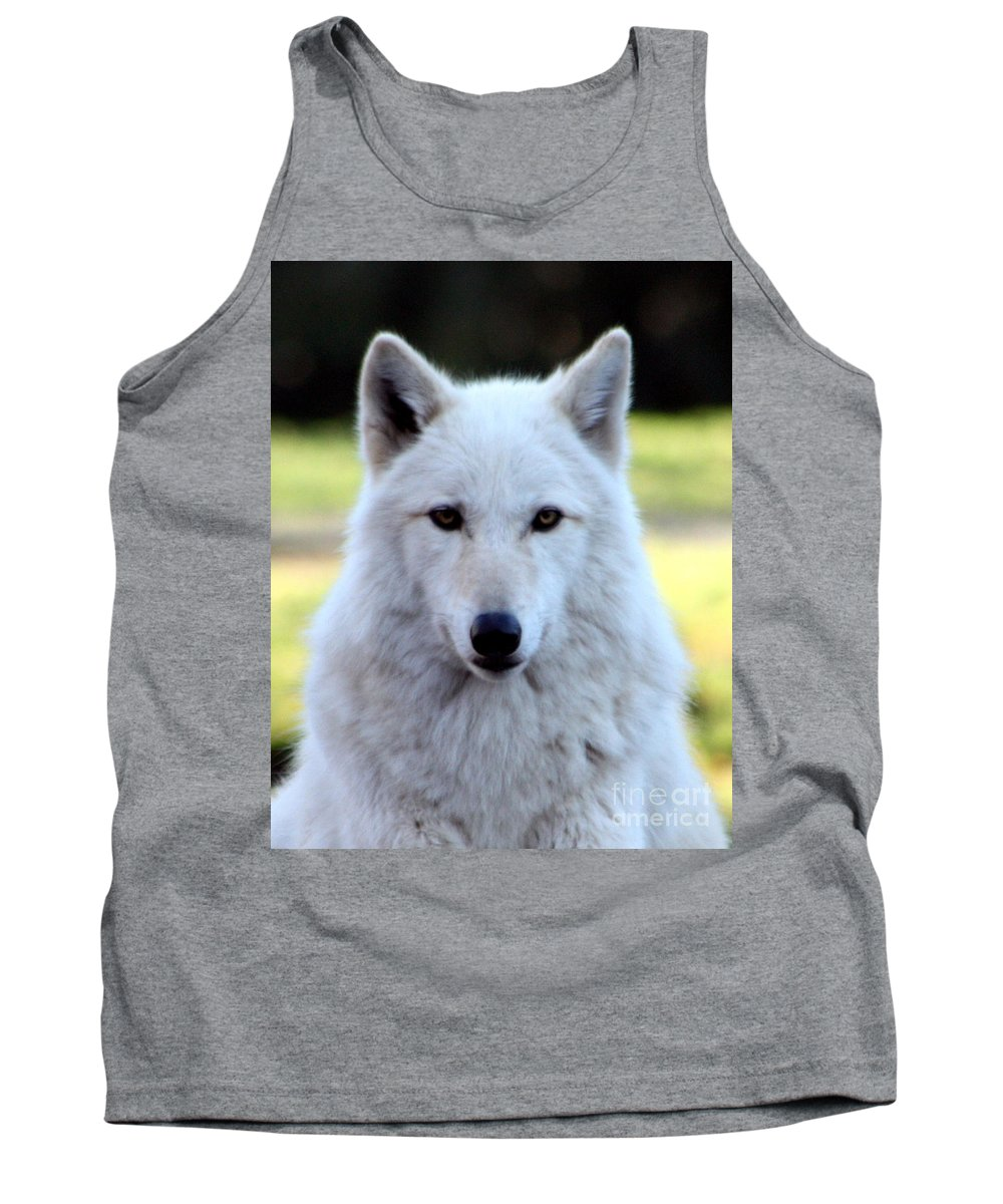 White Wolf Tank Top featuring the photograph White Wolf Close Up by Nick Gustafson