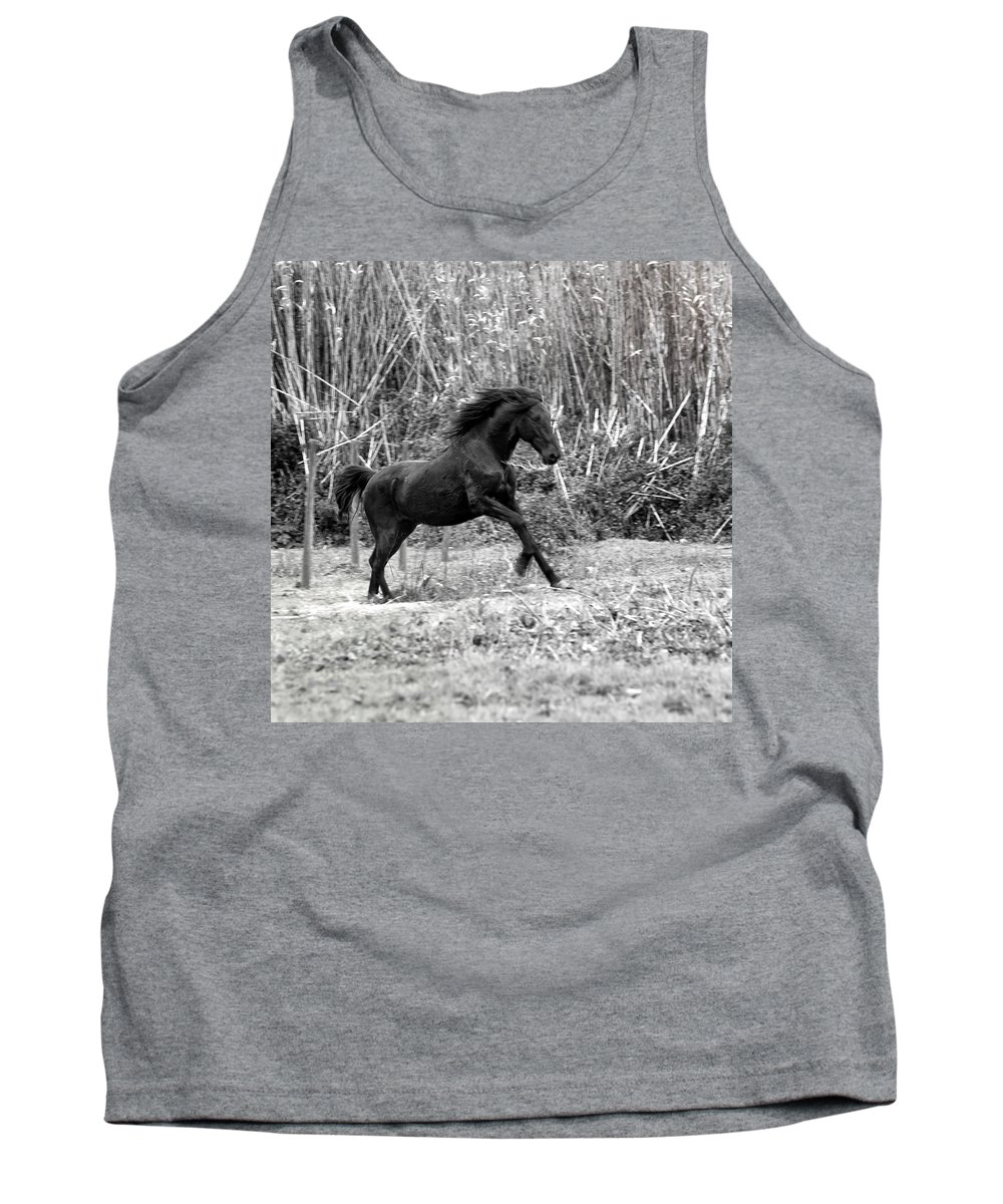 Wild Tank Top featuring the photograph Wild by Edgar Laureano