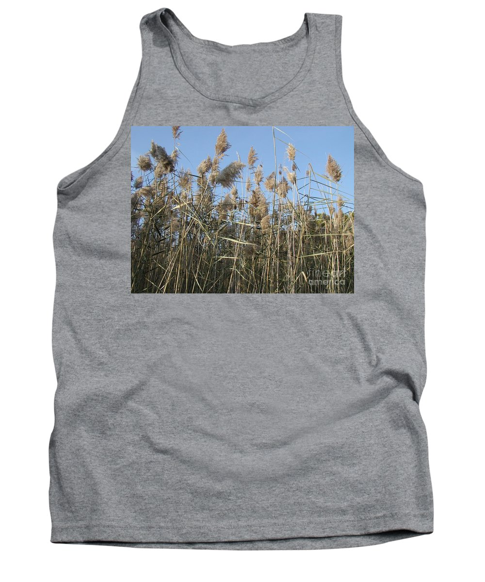 Invasive Species Tank Top featuring the photograph Winter Feed by Joseph Yarbrough