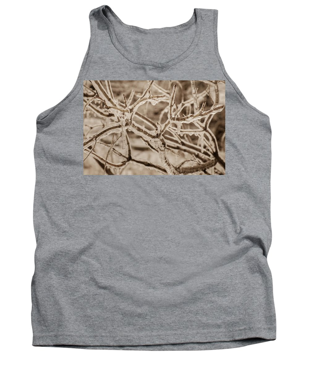 Bill Pevlor Tank Top featuring the photograph Winter Tangle by Bill Pevlor