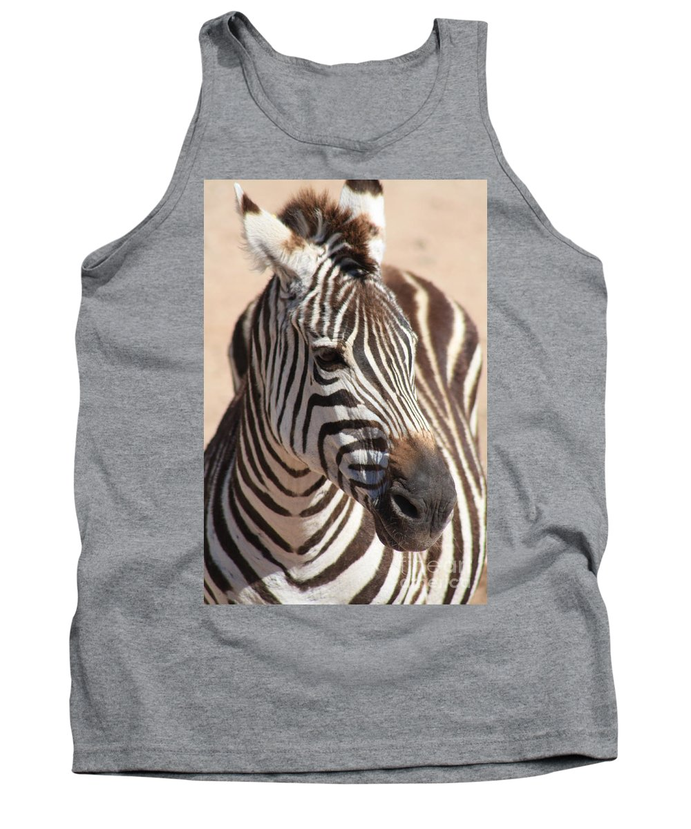 Zebra Tank Top featuring the photograph Zebra by Brandi Maher