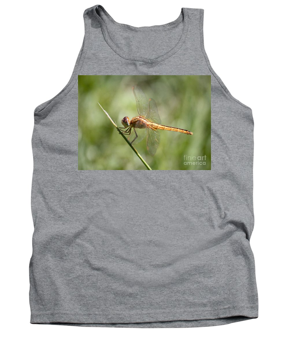 Dragonfly Tank Top featuring the photograph Golden Dragonfly by Carol Groenen