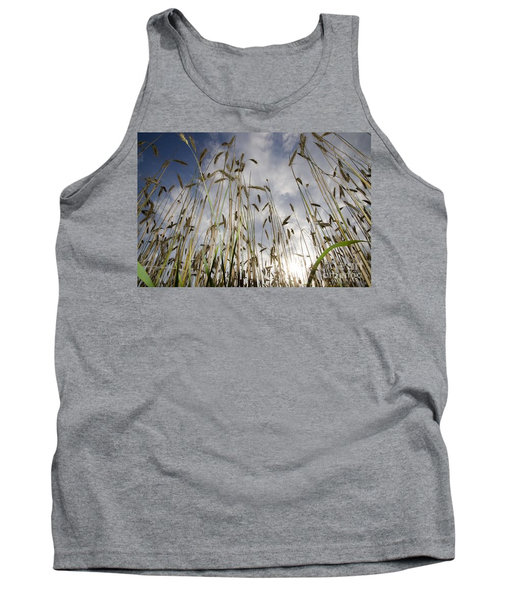 White Tank Top featuring the photograph Wheat Field by Mats Silvan
