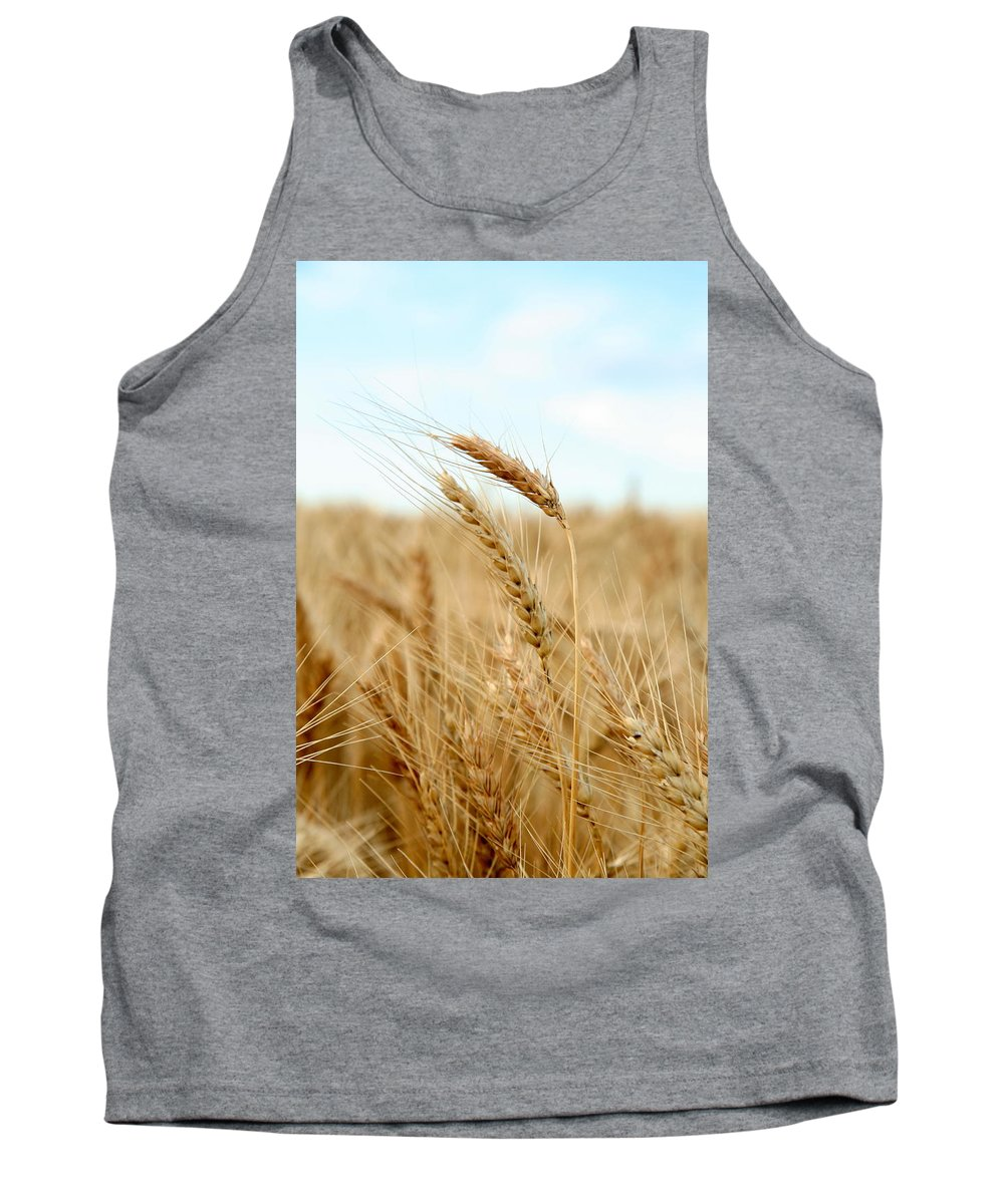 Wheat Tank Top featuring the photograph A Head Taller by Andrew Dyer Photography