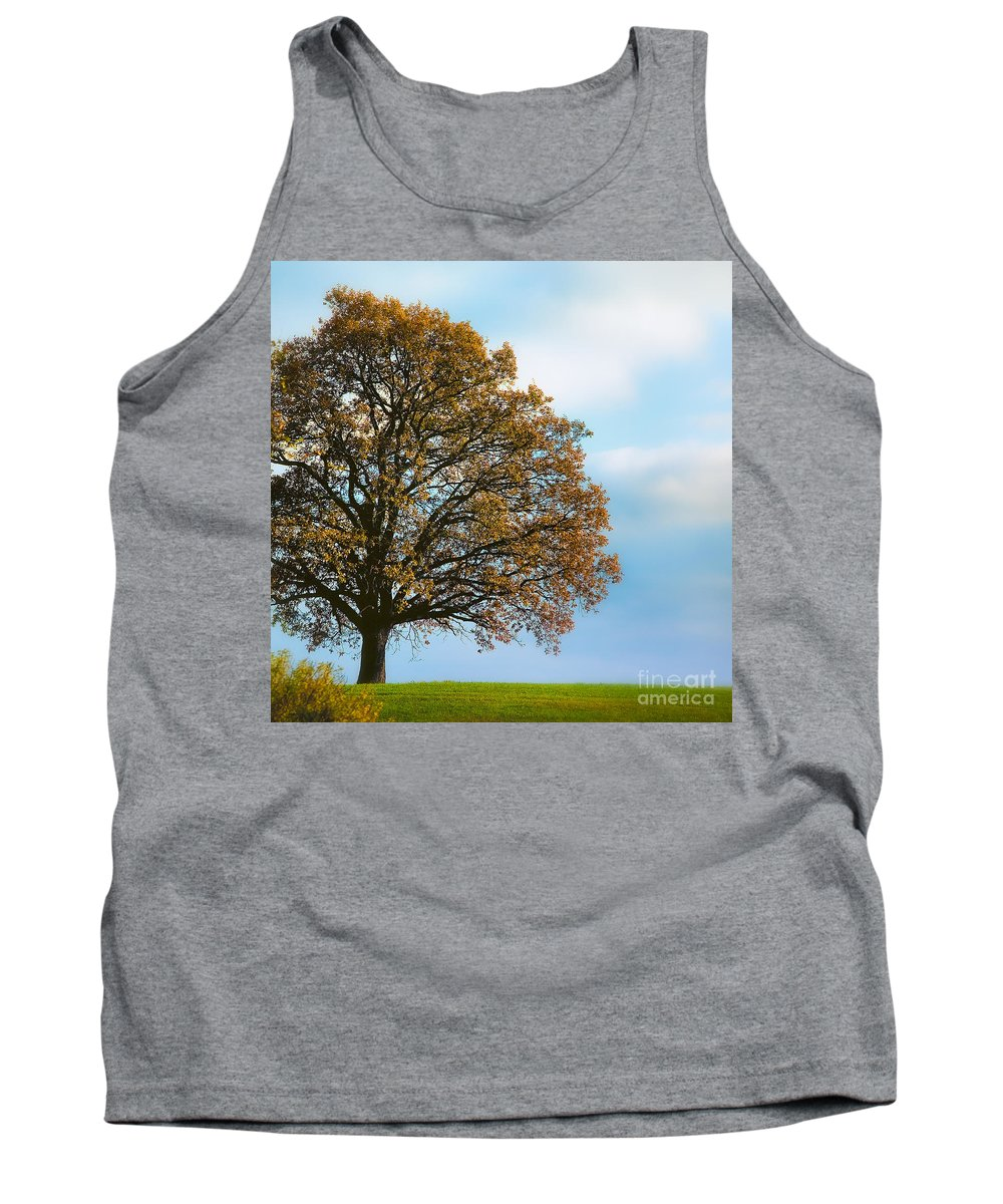 Alone Tank Top featuring the photograph Alone On The Hill by Ari Salmela