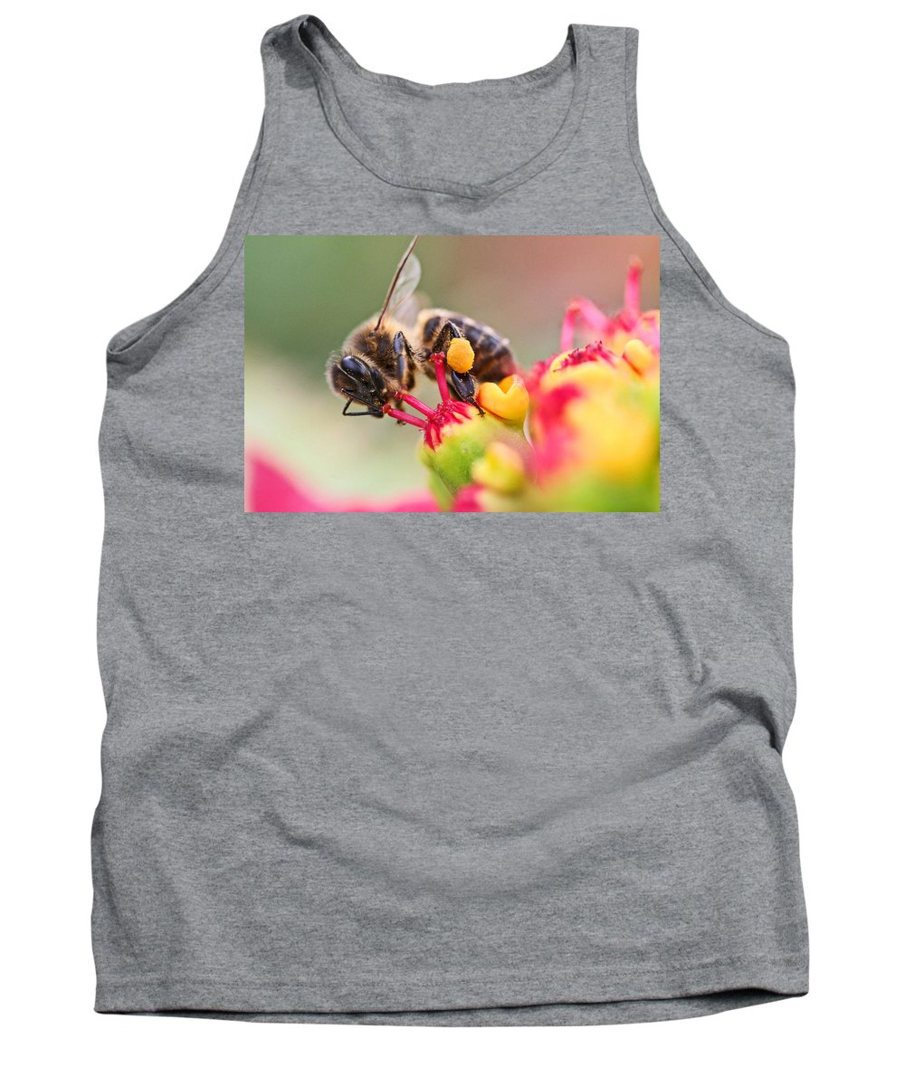 Bees Tank Top featuring the photograph Bee At Work by Ralf Kaiser