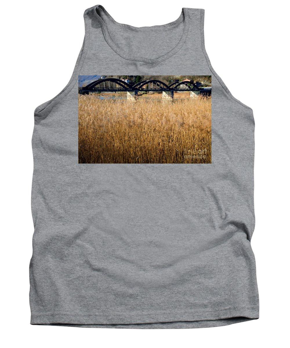 Bridge Tank Top featuring the photograph Bridge And Pampas Grass by Mats Silvan