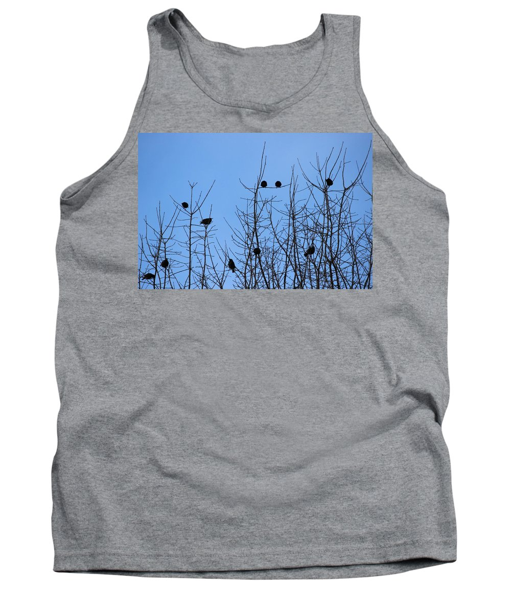 Birds Tank Top featuring the photograph Circle Of Friends by Kume Bryant